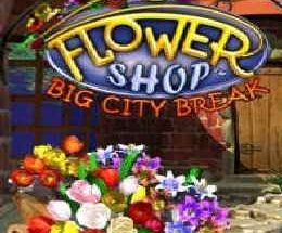 Flower Shop: Big City Break