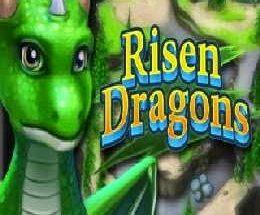 Risen Dragons