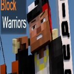 Block Warriors