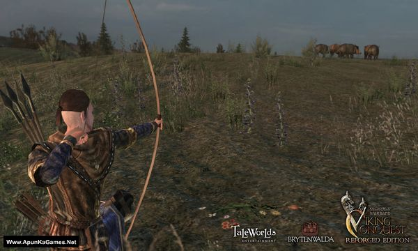 Mount & Blade: Warband Viking Conquest Screenshot 3