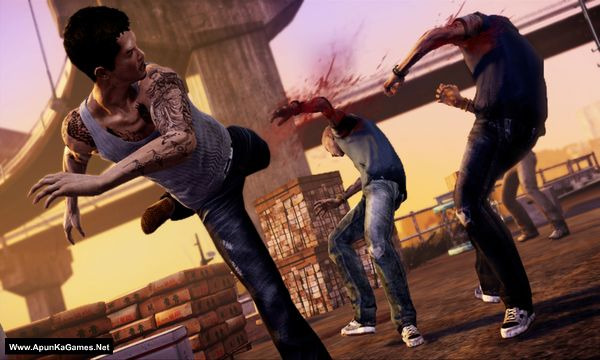 Sleeping Dogs 1 Screenshot 1