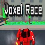 Voxel Race