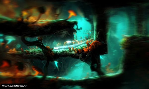 Ori and the Blind Forest: Definitive Edition Screenshot 1, Full Version, PC Game, Download Free
