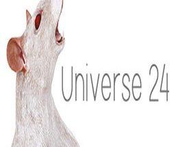 Universe 24