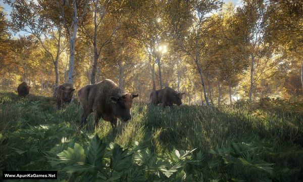 TheHunter: Call of The Wild Screenshot 2, Full Version, PC Game, Download Free