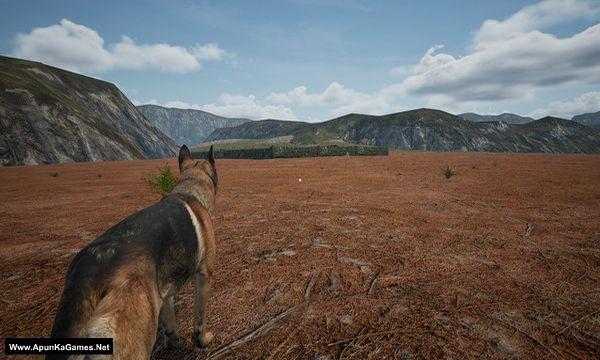 Dog_Fox_Bunny Screenshot 1, Full Version, PC Game, Download Free