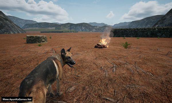 Dog_Fox_Bunny Screenshot 3, Full Version, PC Game, Download Free