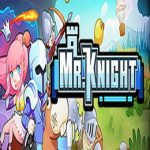 Mr.Knight