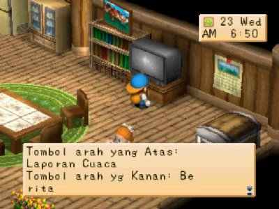 Harvest Moon: Back to Nature Screenshot Photos 2