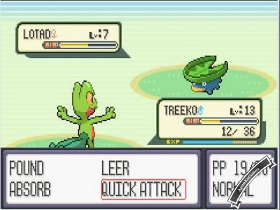 Pokemon Screenshot photos 2