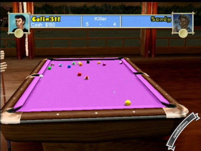 Pool Paradise Screenshot photos 3