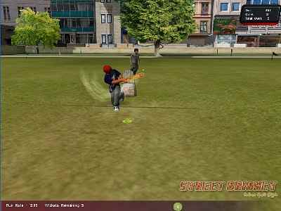 Street Cricket 2010 Screenshot Photos 3